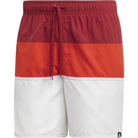 adidas Colourblock SL Swim Shorts Men active maroon/active orange